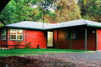 Placerville Single Family Home For Sale: 981 Los Robles Road