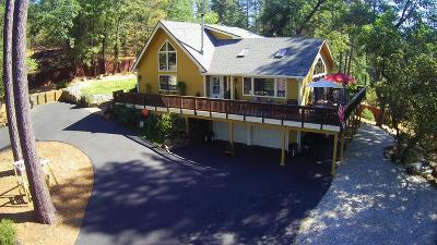 Grass Valley Single Family Home For Sale: 14672 Stinson Drive