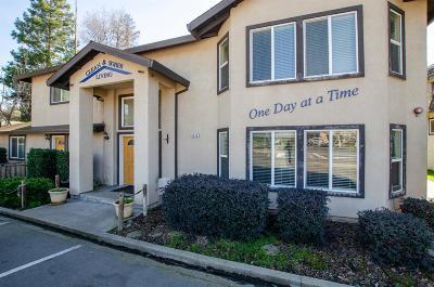 Orangevale Single Family Home For Sale: 9317 Orangevale Avenue