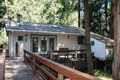 Pollock Pines Single Family Home For Sale: 6255 Bucktail Lane