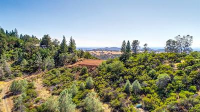 Pilot Hill CA Residential Lots & Land For Sale: $379,500