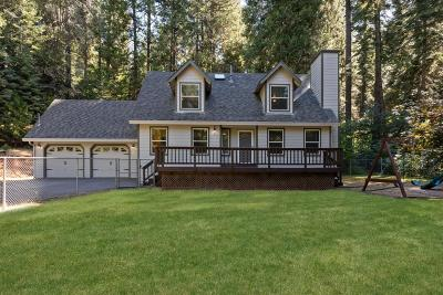 Pollock Pines Single Family Home For Sale: 6702 Topaz Drive