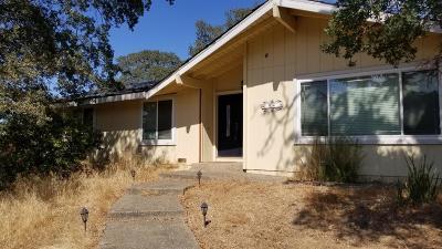 El Dorado Hills Single Family Home For Sale: 934 Haight Court