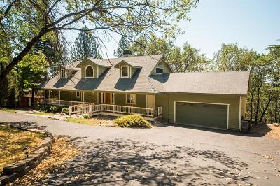 Foresthill Single Family Home For Sale: 6442 Fernwood Court