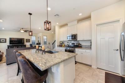 El Dorado Hills Single Family Home For Sale: 8096 Avanti Drive