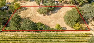 Fair Oaks Residential Lots & Land For Sale: 8512 Winding Way