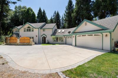 Pollock Pines Single Family Home For Sale: 2400 Mayflower Road