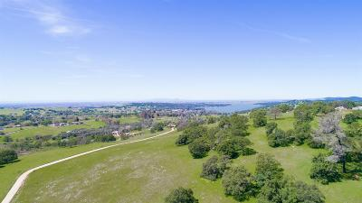 Lincoln Residential Lots & Land For Sale: Vista Avenue