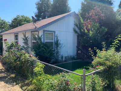 Wilseyville Single Family Home For Sale: 4054 Blagen Blvd