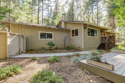 Nevada City Single Family Home For Sale: 20638 Rector Road