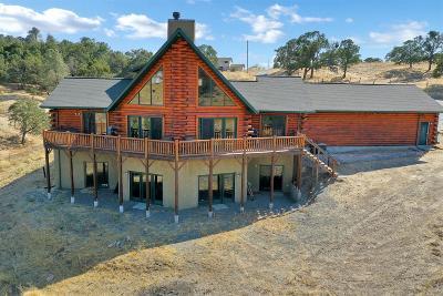Valley Springs Single Family Home For Sale: 2000 Faith Lynn Ln