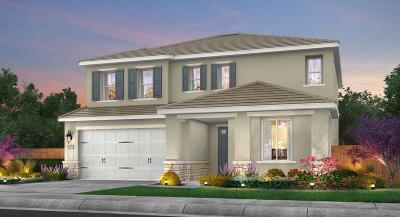 El Dorado Hills Single Family Home For Sale: 3009 Whistling Way
