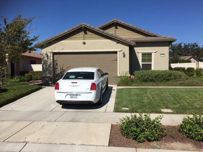 Manteca Single Family Home For Sale: 1387 Arbor Brook Drive