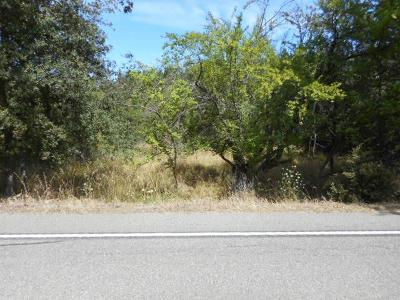 Grass Valley Residential Lots & Land For Sale: 11176 Ball Road