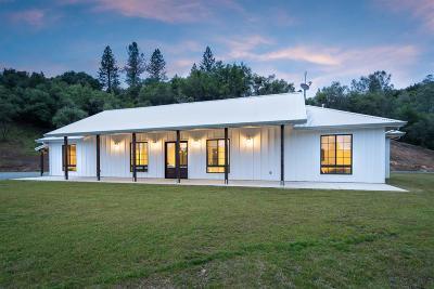 Sutter Creek Single Family Home For Sale: 13902 Shake Ridge Road