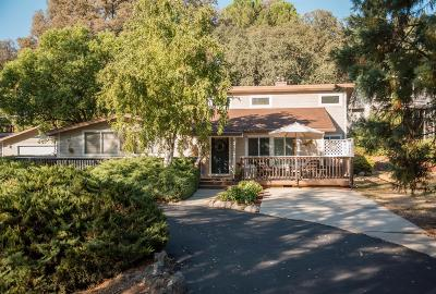Auburn Single Family Home For Sale: 24159 Green Valley Road