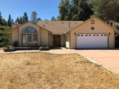 Placerville Single Family Home For Sale: 3200 Gopher Hole Road