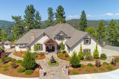 Shingle Springs Single Family Home For Sale: 5390 Lost Creek Road