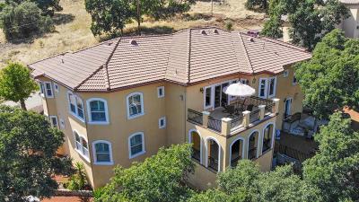 El Dorado Hills Single Family Home For Sale: 3534 Park Drive