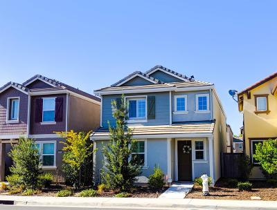 Rancho Cordova Single Family Home For Sale: 10845 Barden Drive