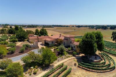 Galt, Rancho Murieta, Sloughhouse, Wilton Single Family Home For Sale: 13770 Indio Drive
