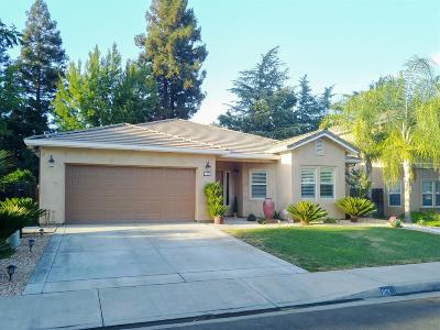 Turlock Single Family Home For Sale: 1121 Hedstrom Road
