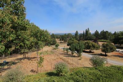 Colfax Single Family Home For Sale: 21255 Meadow Oaks Lane