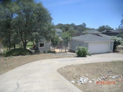 Cool Single Family Home For Sale: 1552 American River Trail