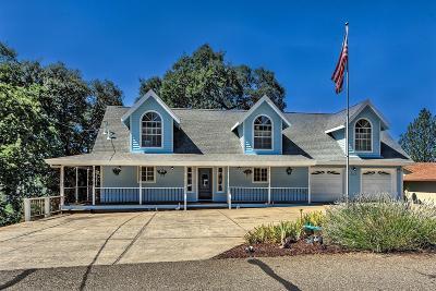 Groveland Single Family Home For Sale: 20610 Nob Hill Circle