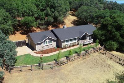Cool Single Family Home For Sale: 2101 Gravel Gulch Court