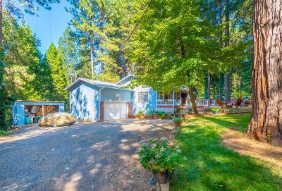 Colfax Single Family Home For Sale: 480 Alpine Drive