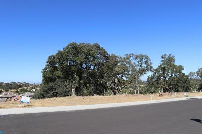 Folsom Residential Lots & Land For Sale: 699 Townsend Court