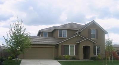 Roseville Single Family Home For Sale: 919 Trehowell Drive