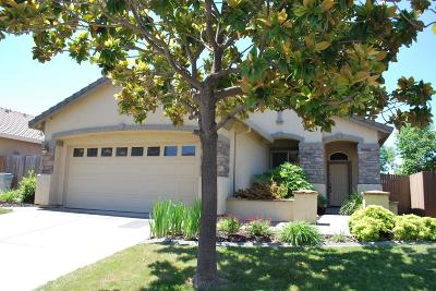 Folsom Single Family Home For Sale: 717 Hillswick Circle