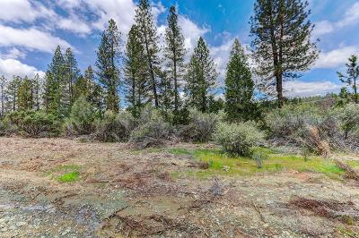 Grass Valley Residential Lots & Land For Sale: 1349 Idaho Maryland Road