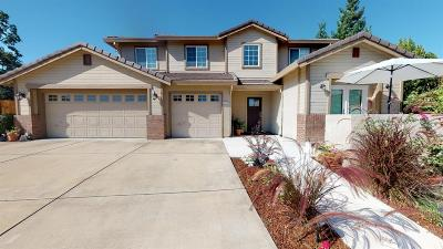 Cameron Park Single Family Home For Sale: 5024 Sagan Court