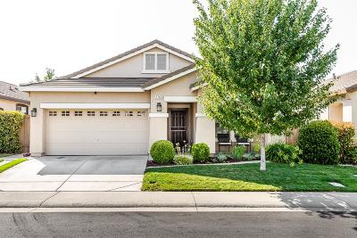 Roseville Single Family Home For Sale: 1741 Adrienne Drive