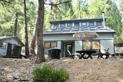 Nevada City Single Family Home For Sale: 12550 Zeibright Road