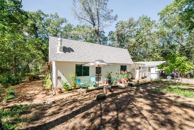 Placerville Single Family Home For Sale: 5090 Coyote Hill Road