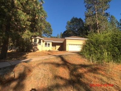 Grass Valley Single Family Home For Sale: 16785 Norlene