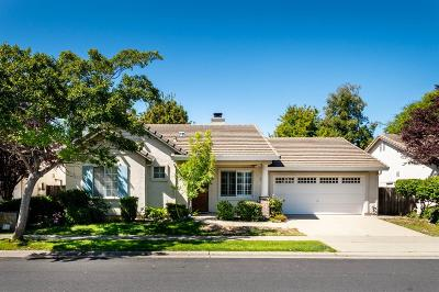 Roseville Single Family Home For Sale: 867 Laurel Drive
