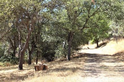 Grass Valley Residential Lots & Land For Sale: 11008 Old Pond Lane