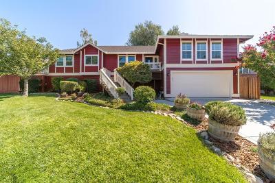 Fair Oaks Single Family Home For Sale: 4346 Wendover Court