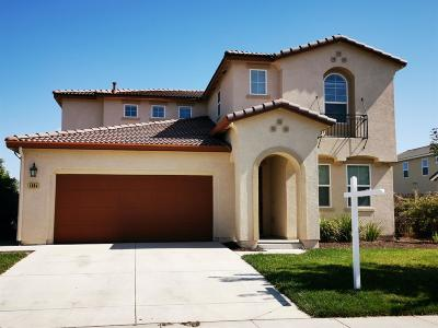 Manteca Single Family Home For Sale: 1654 Sand Lane