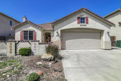 Manteca Single Family Home For Sale: 1541 Swallow Tail Ln
