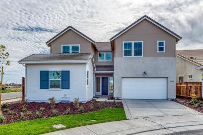 Lathrop Single Family Home For Sale: 17116 Kestral Court