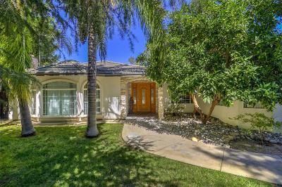 Fair Oaks Single Family Home For Sale: 8407 Hialeah Way