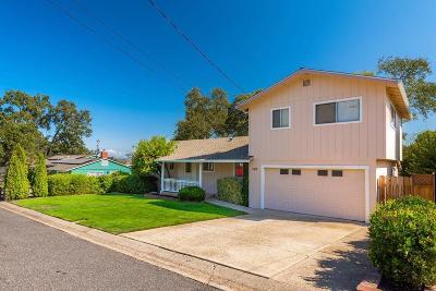 Sutter Creek Single Family Home For Sale: 180 Patricia Lane