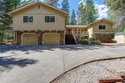 Grass Valley Single Family Home For Sale: 15830 Carrie Drive