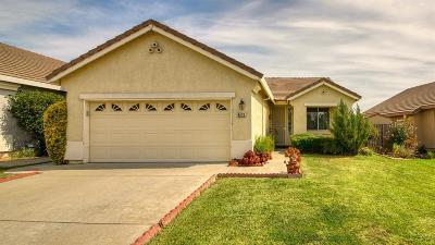 Antelope Single Family Home For Sale: 8420 Pinyon Pine Place